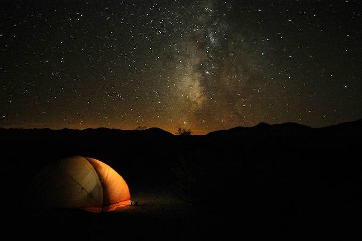Vegan Campsite for Stargazers & Nature Lovers