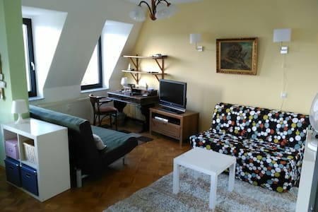 Dignified attic apartment (2 rooms) at the park - ไลพ์ซิก