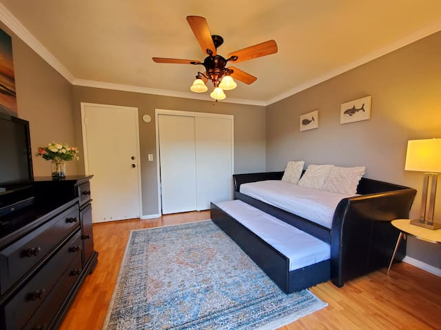 guest room 12/3 with daybed. Converts to 2 double beds