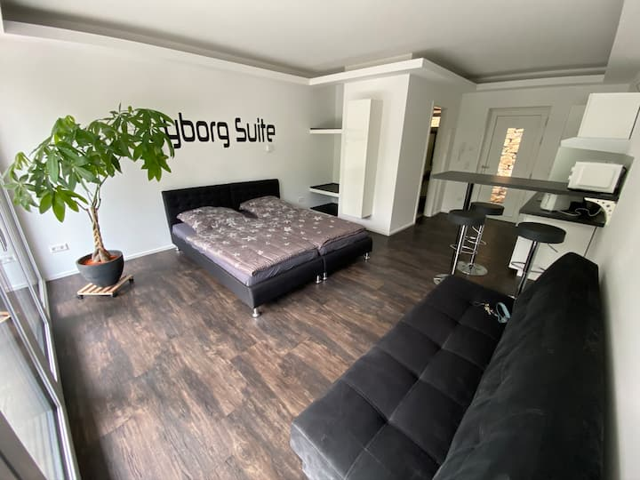 Cyborg-Suite Brackenheim / Heilbronn / Stuttgart