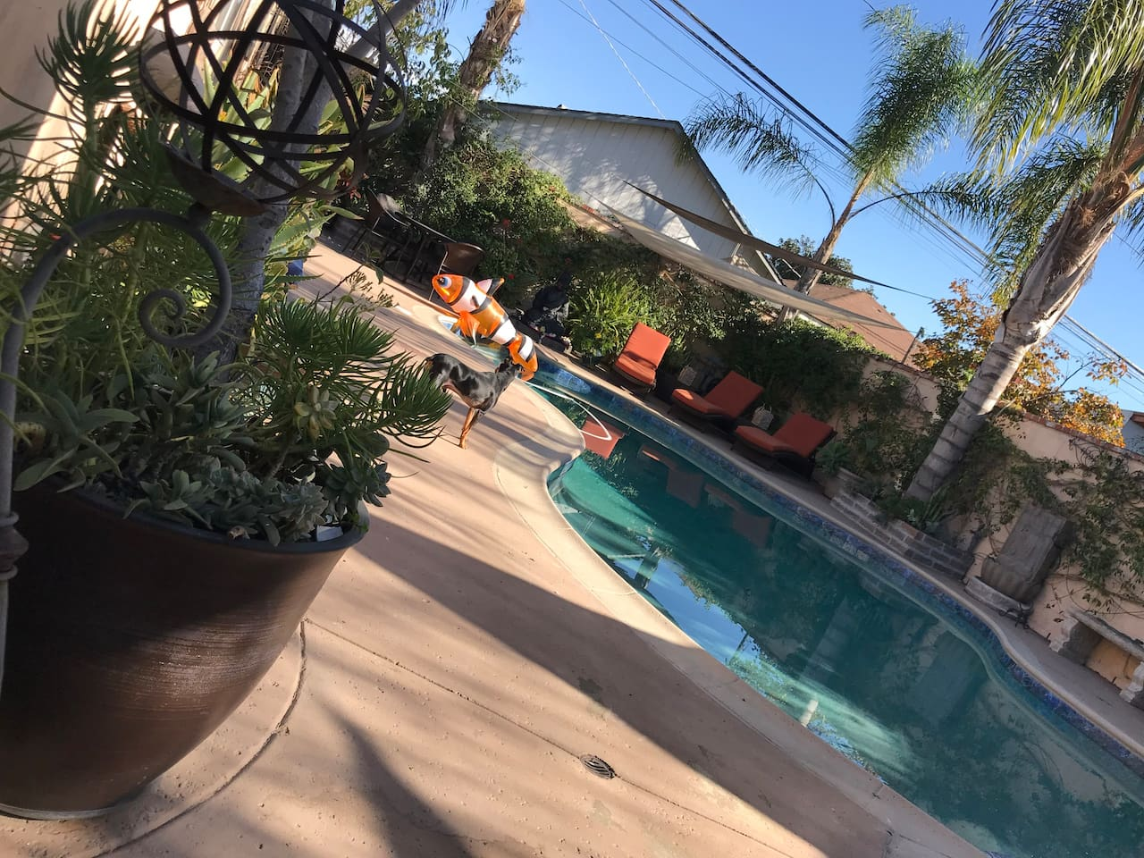 Sunny days all year round!! Relax in the hot tub day or night!!! Just steps away from your bedroom door!!