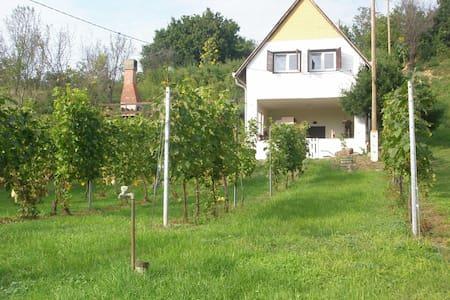 Szőlőskert Vendégház - Baj - Haus