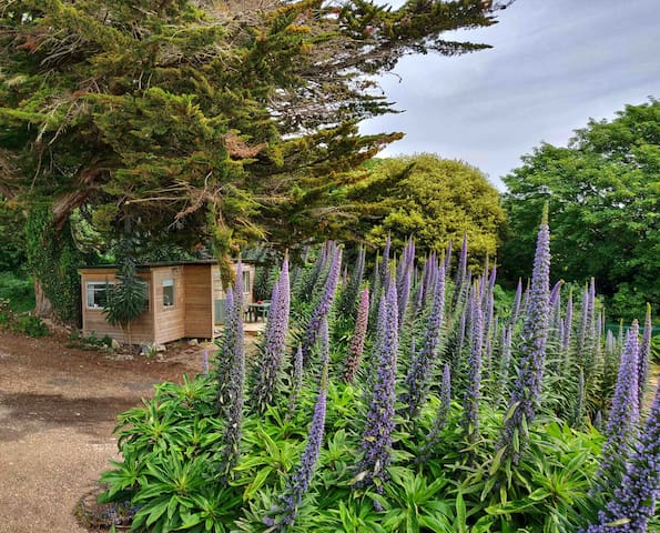 Tiny house in Ventnor Botanic Garden