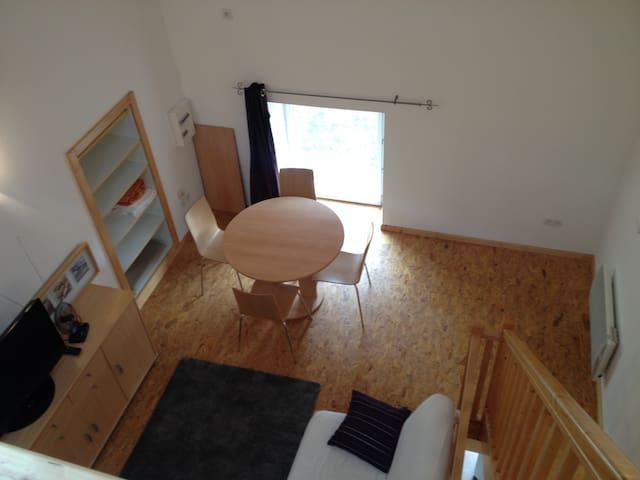 Grand studio mezzanine à 10km de Vienne - Moidieu-Détourbe - Appartamento