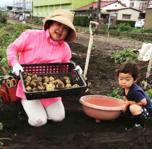 孫とジャガイモ掘り〜