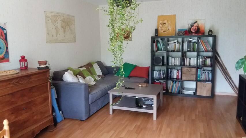 Agréable/simple 52 m2  Nantes sud proche du centre - Nantes - Flat