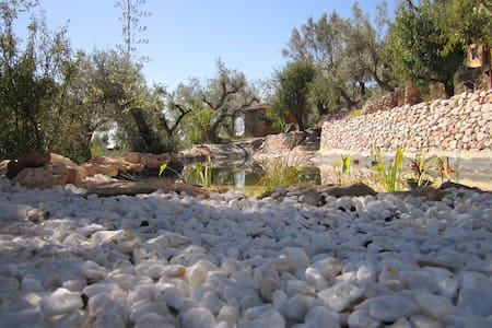 Charming eco finca in Olive grove - Blue bedroom - House