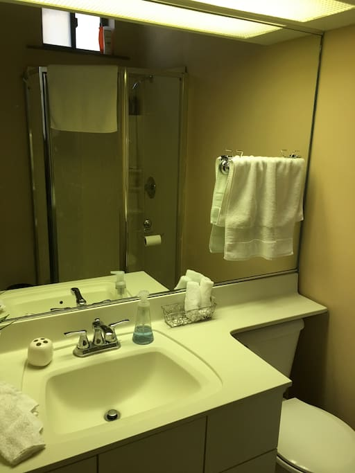 Sink, toilet and shower