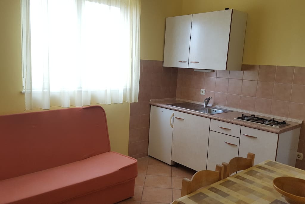 Studio apartment With couch for one guest, Tv, kitchen with fridge