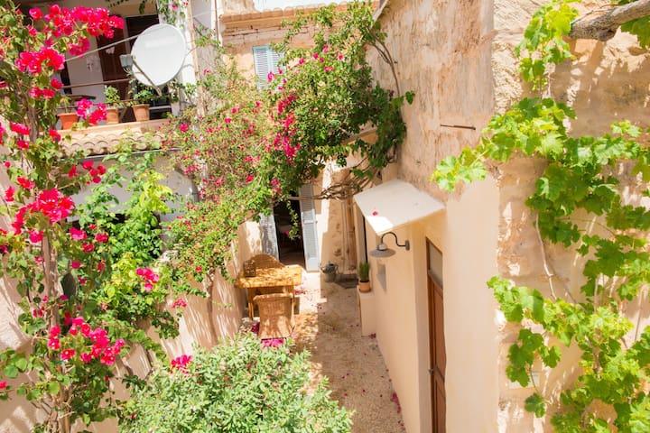 Enjoy mediterranean lifestyle! - Santanyí - Ev