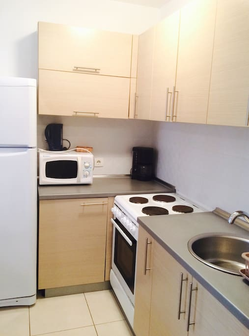 Kitchen side: electric stove and oven, big fridge, microwave, all kitchen appliances