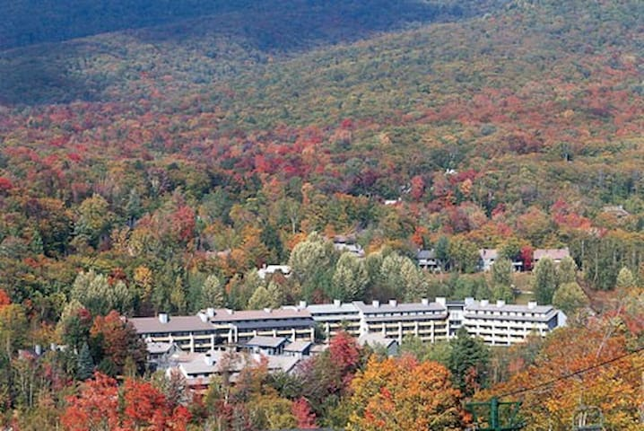 Foliage Season at Pollard Brooks Resort in Lincoln