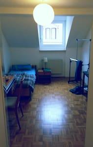 Zentrales Zimmer in Neustadt Stadtmitte - Neustadt an der Weinstraße