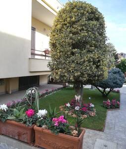 Agrifoglio, appartamento a Caserta