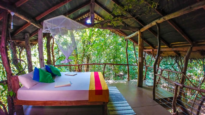 Jungle Book Living in Comfy Tree House n/ Sigiriya