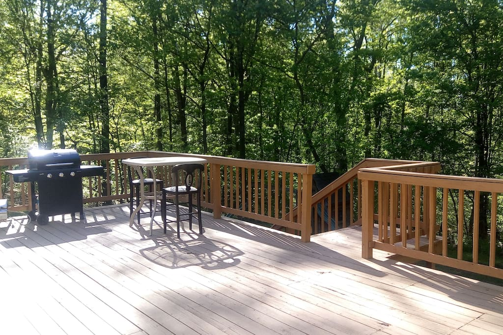 Deck overlooking 2 acres of wooded property in a secluded neighborhood