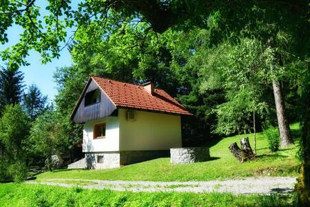 Newly renovated house, peaceful & green location