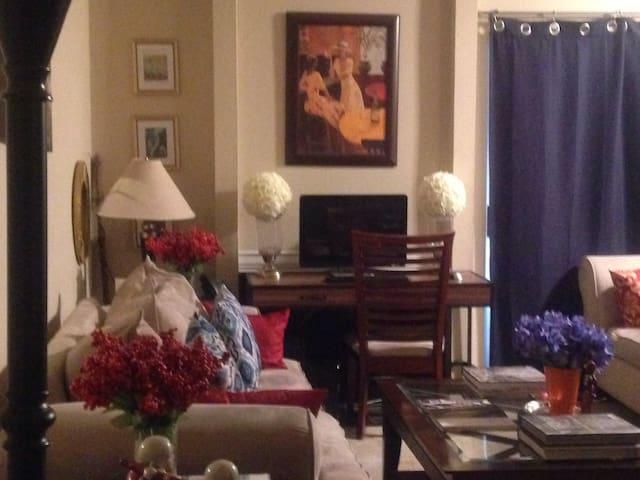 Cozy and Safe Apartment Houston Texas