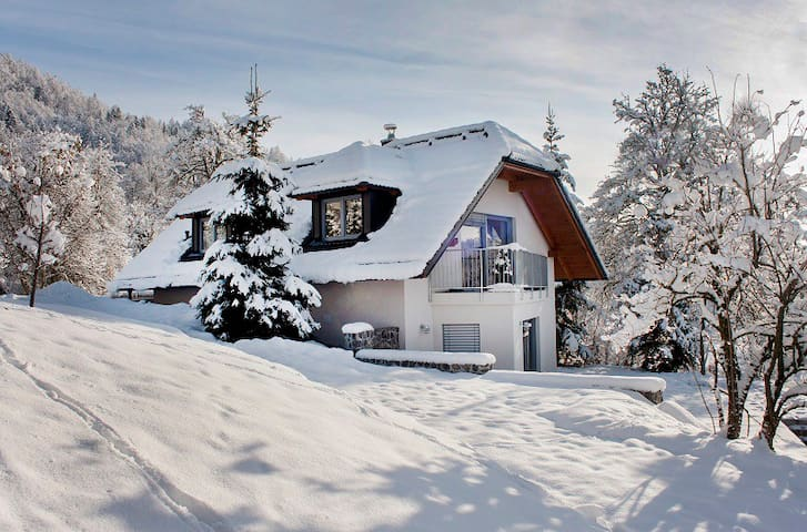 The house in winter....