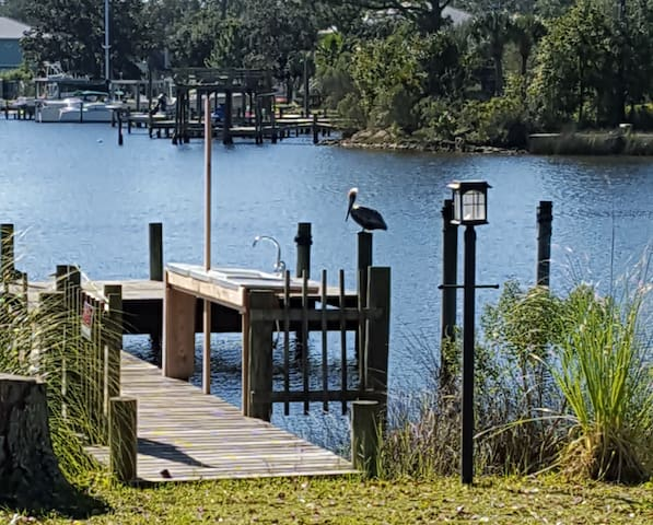 Pelican's Perch on Bayou Davenport