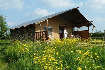 Pippin Lodge