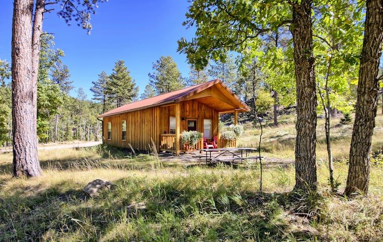Black Hills Custom Cabin near Mt Rushmore 5⭐️ Yak Ridge #1
