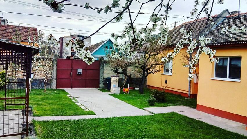 Bright house with lovely backyard near city center