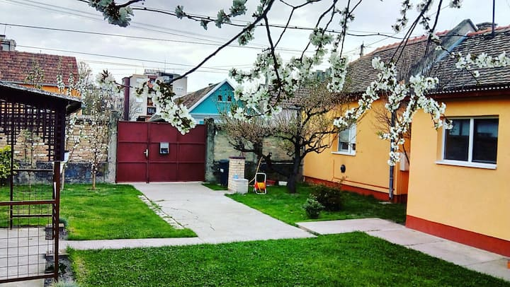 Bright house with lovely backyard near city center