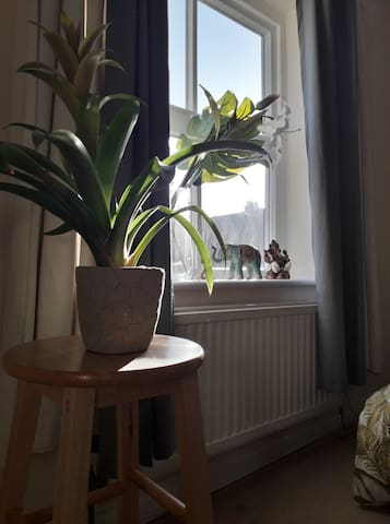 Bright and spacious double room