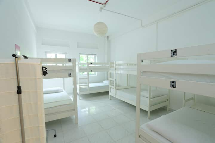 Gusti Bed & Breakfast - 8 Bed Room (Private)