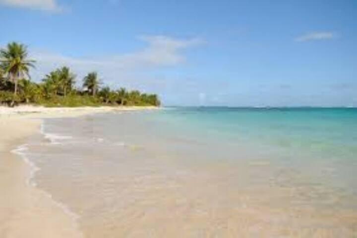 Dorado Coves Lodge-OCEAN FRONT!!!