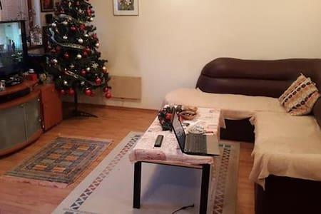 Skopje Apartment - 斯科普里(Skopje) - 獨棟