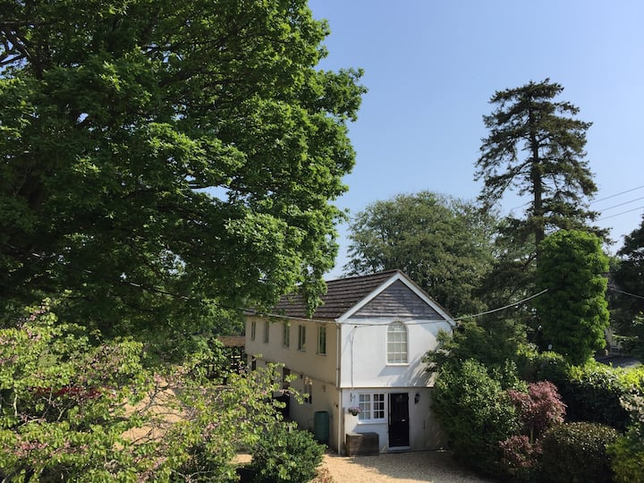 New Forest Cottage with direct forest access