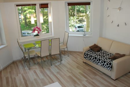 Apartament Light & Bright - Miedzyzdroje - Apartment
