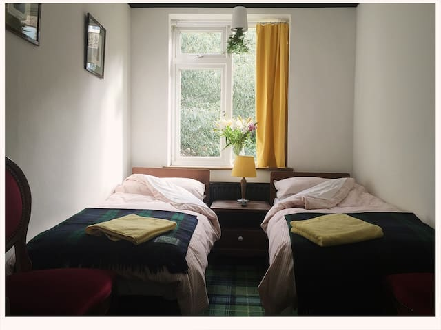 Charming twin bedroom with en suite - London - House