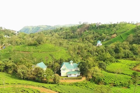 Lavender vagamon Spacious room in plantation stay