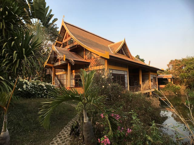 Jungle House  (dinner/b&b) - Vientiane - House