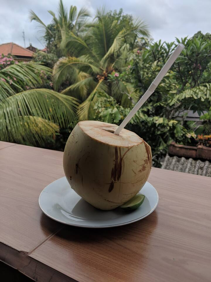 Refreshing coconut drink in my garden.