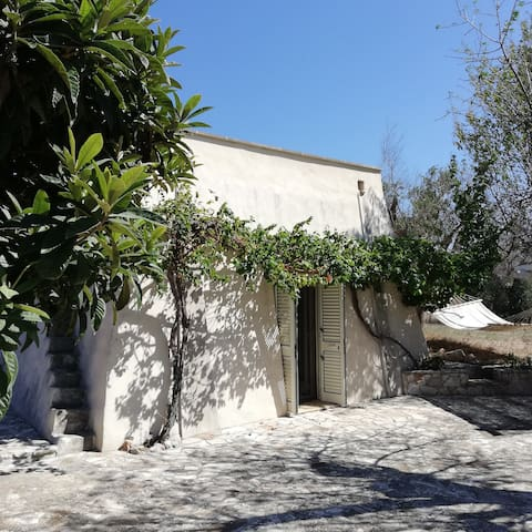 small house with whirlpool within olive trees