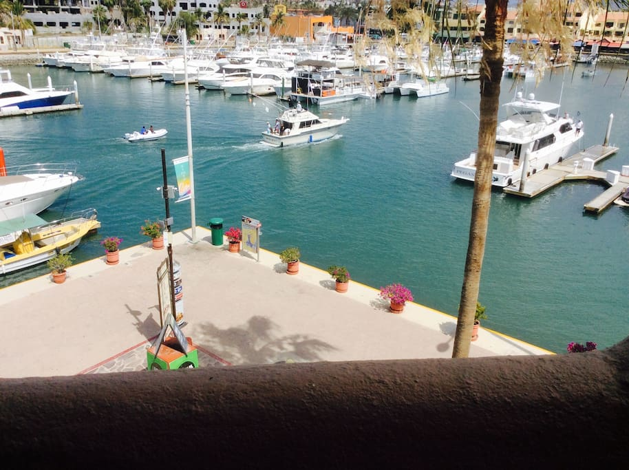 View of the Marina from the patio