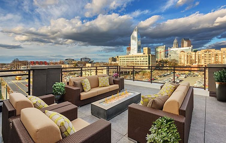 Charming pretty one bedroom in PERFECT LOCATION - Charlotte - Apartment