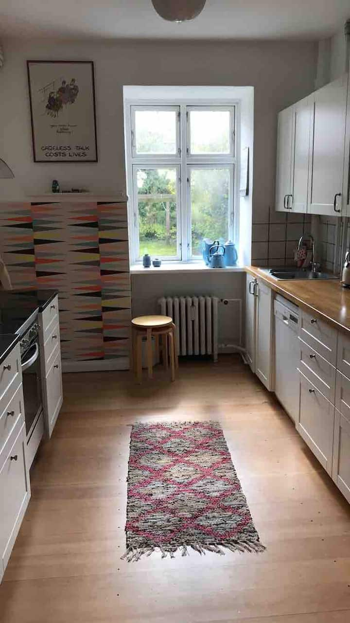 Lovely apartment right next to the water in Odense