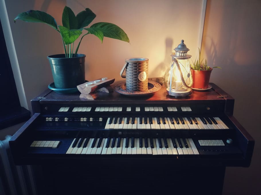 Hammond, lamp, plants and candles.