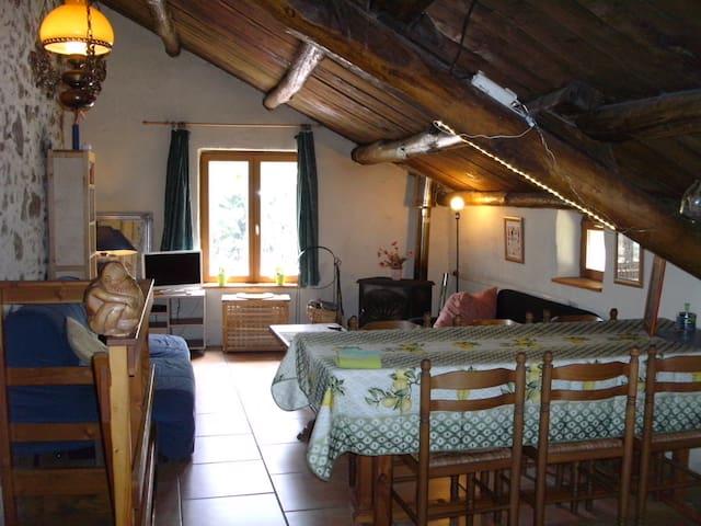 Gite Figuier a la ferme - Saint Pons de Thomieres - Appartement