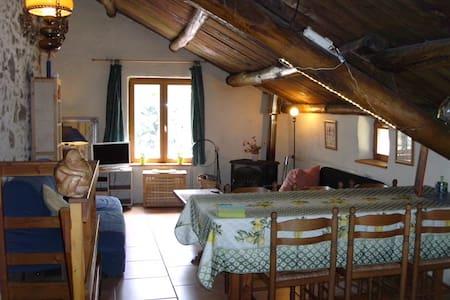 Gite Figuier a la ferme - Saint Pons de Thomieres