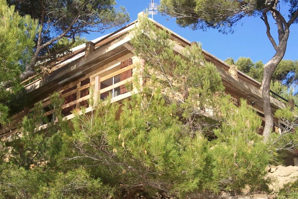 une maison cachée dans les pins..