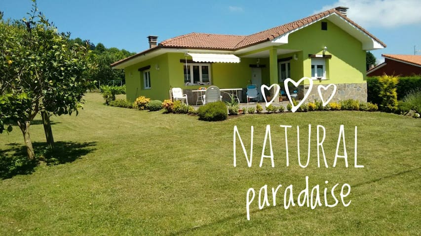 Relax and enjoy  in Asturias
