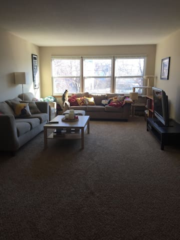 Uptown Minneapolis 1 bedroom