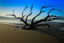 Famous Jekyll Island...by day