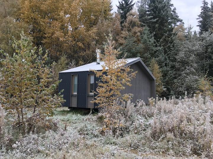 Коттедж-студия с панорамным видом на лес